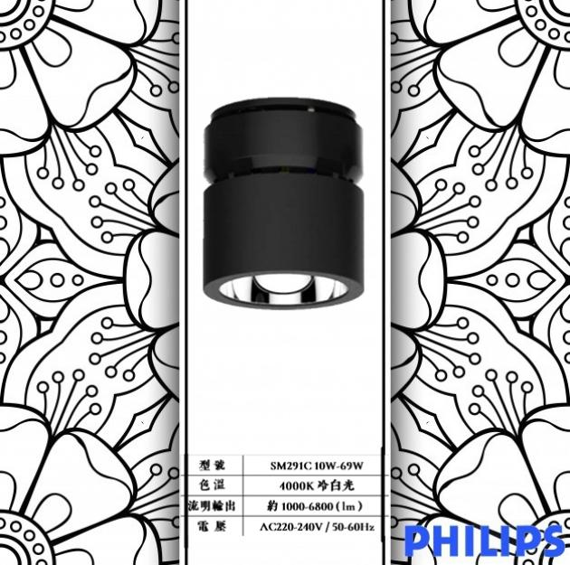 LED SM291C Down Lights 1